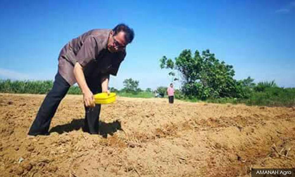 Image result for Foto Projek 'Wan Kembang atau One Blossom'