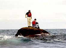 south ledge island 230508 low tide