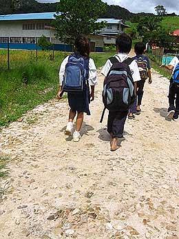 the antidote article sarawak native logging school children 280409 01