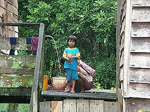 the antidote article sarawak natives life in interior sarawak 050509 02