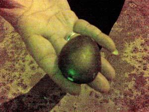 gurdwara sahib sentul stone