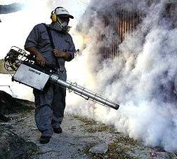 dengue malaria mosquito outbreak fogging 290905