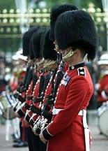 british coldstream guard
