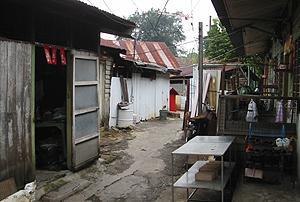 loke yew chinese new village